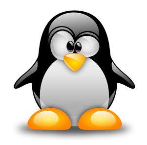 Los puertos más importantes en sistemas Linux