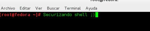 securizando shell