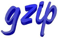 Gziptest.com chequea si tienes la compresión Gzip activada